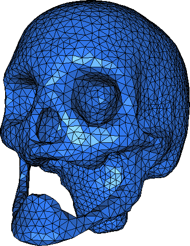 http://www.cgal.org/Manual/latest/doc_html/cgal_manual/Surface_mesher/skull-surface.png